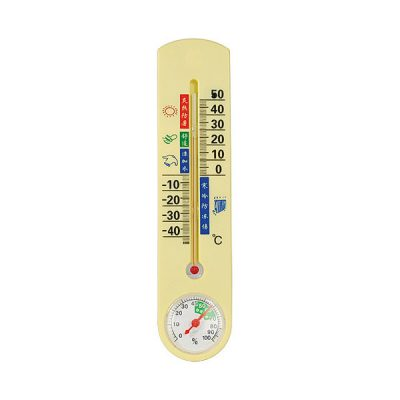 Thermometer Hidden Camera with Built in DVR